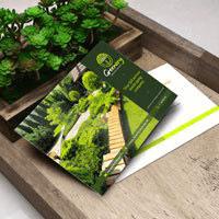 green standard postcard